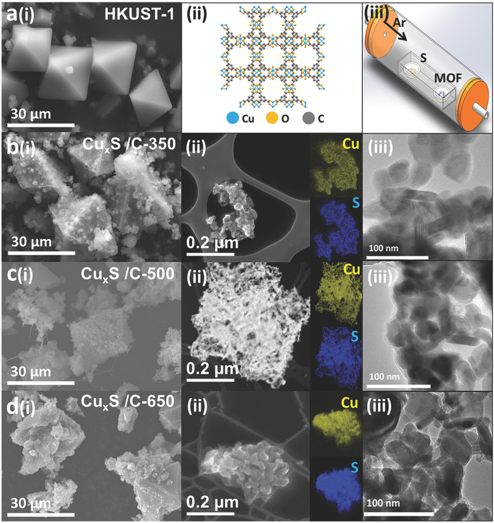 Just Published in Advanced Functional Materials- Foley et al